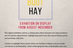 BMHS Exhibit - Aug-Nov 2019.jpg