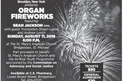 Organ Fireworks - Aug 11 2019.jpg